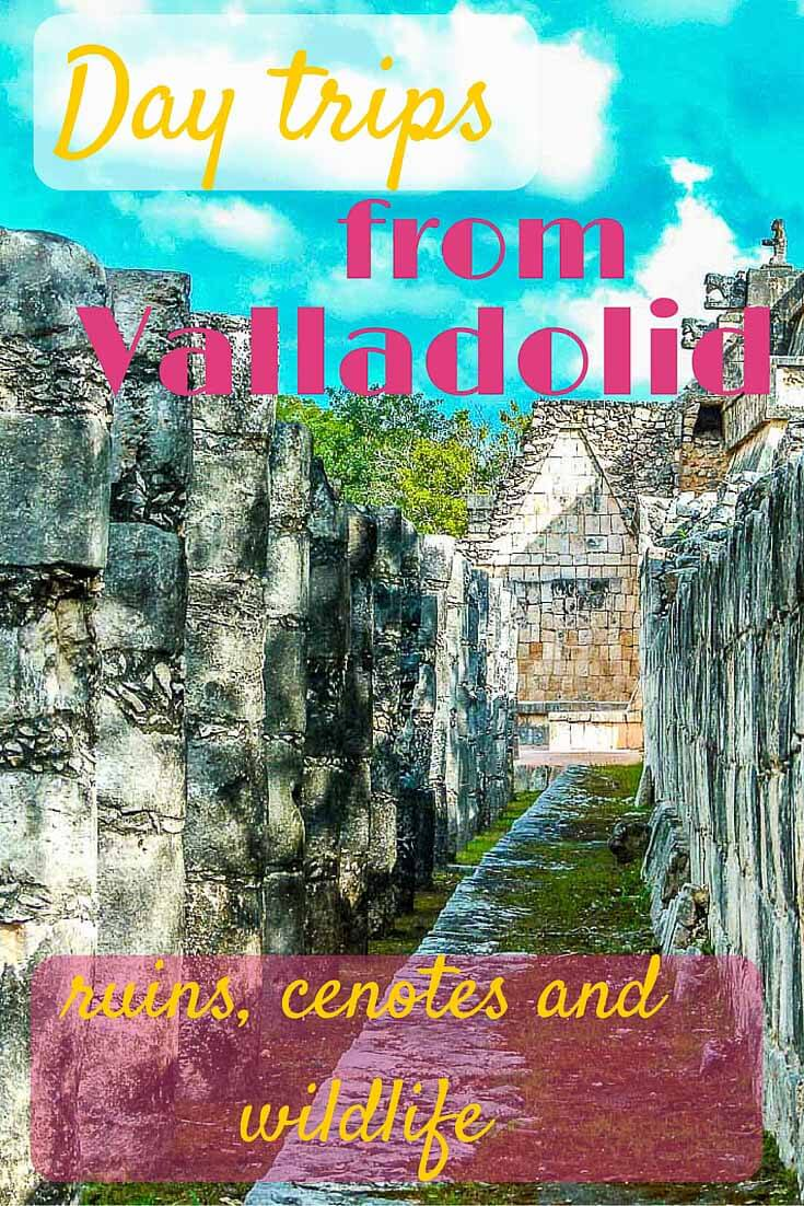 Day trips from Valladolid - ruins, cenotes and wildlife