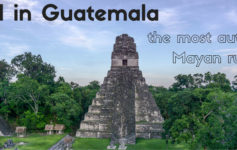 Tikal in Guatemala - the most authentic Mayan ruins