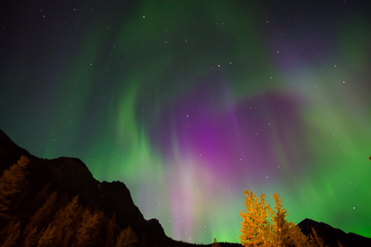 50 things I'm thankful for this year - Northern Lights