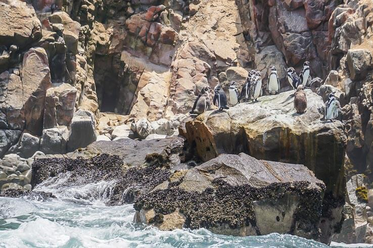 Month 7 recap of our trip around the world - Peru